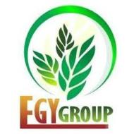 EGY Group