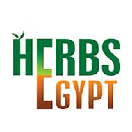 Herbs Egypt